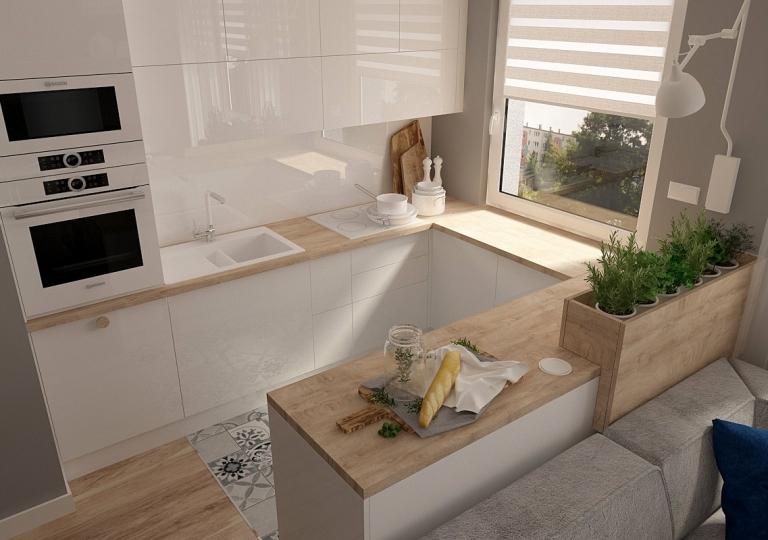 Salon z kuchnią (5)